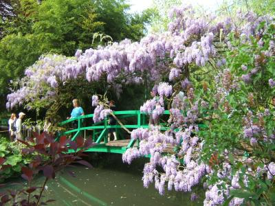 japanese foot bridge in monet garden giverny